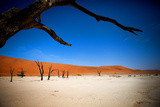 Namibia Desert Photographic Print by MJO Photo
