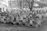 Old Jewish Cemetery, Remuh Synagogue, Krakow Photographic Print by  demerzel21