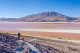 Laguna Colorada, Reserva Nacional De Fauna Andina Eduardo Avaroa, Los Lipez, Bolivia Photographic Print by Elzbieta Sekowska