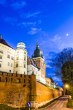 Wawel Hill by Night - Krakow Prints by Jorg Hackemann