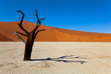 Namib Desert, Sossusvlei, Namibia Photographic Print by  DR_Flash
