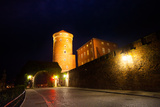 Gates of Wawel Royal Castle in Krakow, Poland Photographic Print by  SerrNovik