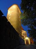 Royal Wawel Castle Illuminated by Night, Krakow - Poland Photographic Print by  pryzmat