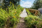 Overgrown Historic Railway Bridge Photographic Print by Ruud Morijn