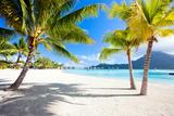Beautiful Beach with a View of Otemanu Mountain on Bora Bora Island Photographic Print by BlueOrange Studio