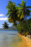 Bora Bora Photographic Print by Captain Lloyd