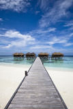 Luxury Hotel in Tropical Island Photographic Print by  nitrogenic.com