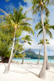 Beautiful Beach with Coconut Palms on Bora Bora Island in French Polynesia Photographic Print by BlueOrange Studio