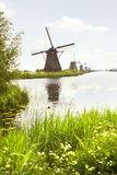 Row of Windmills in Kinderdijk, the Netherlands Photographic Print by  Colette2