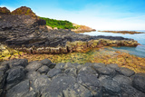 Giant's Causeway. Photographic Print by  GoodOlga