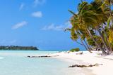 Tropical Beach at Bora Bora Photographic Print by  noblige