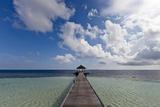 The Way of Paradise Island Photographic Print by  nitrogenic.com