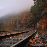 Train Tracks, Fall and Fog Photographic Print by Owen Luther