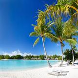 Beautiful Beach with Coconut Palms on Bora Bora Island in French Polynesia Photographic Print by BlueOrange Studio