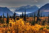 Taiga, Glacier, and Chugach Mountains Photographic Print by Tan Yilmaz