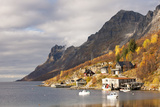 Autumn at Ersfjordboton, Tromso, Norway Photographic Print by David Clapp