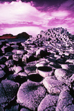 Giant's Causeway Photographic Print by Richard Cummins