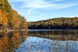 Fall Foliage at Norwich Pond, Nehantic State Forest in Connecticut. Photographic Print by Jake Wyman