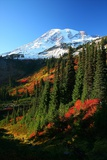 Mt Rainier Fall Color Photographic Print by Jonkman Photography