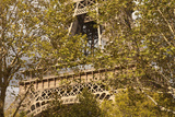 The Eiffel Tower, Seen through Trees Photographic Print by Owen Franken
