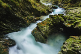 The Soteska Vintgar Gorge in Autumn Photographic Print by Jeremy Woodhouse