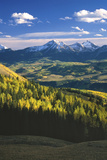 Aspens in Fall Last Dollar Road Telluride Colorado Photographic Print by Scott Cramer