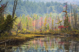 Autumn Reflections at Adirondack National Park Photographic Print by Bob Pool