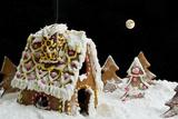Christmas Gingerbread House Fotografisk tryk af  eans