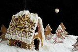 Christmas Gingerbread House Photographic Print by  eans
