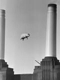 Pink Floyd's Pig Fotografisk tryk af  Keystone