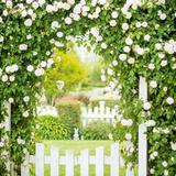 Garden Gate Photographic Print by Pamela N. Martin
