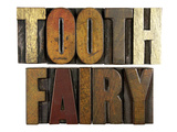 Tooth Fairy Photographic Print by  enterlinedesign