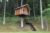 Tree House Photographic Print by  Cebas
