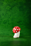 Cute Small Mushroom, Green Background Photographic Print by  zveiger