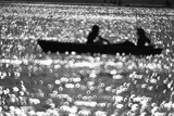 Tourists Rowing Photographic Print by Evening Standard
