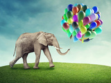 Elephant with a Colorful Balloons Photographic Print by  egal