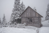 Wooden House in Winter Forest Photographic Print by mr. Smith