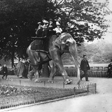 Elephant Ride Photographic Print by Paul Martin