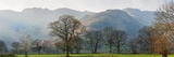 Autumn, Langdale, Lake District, England, UK Fotografie-Druck von Peter Adams