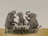 Elephants Having Tea Party Photographic Print by Blend Images - John Lund/Stephanie Roeser