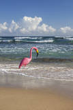 Usa, Puerto Rico, Plastic Flamingo on Isabel Beach Photographic Print by Bryan Mullennix