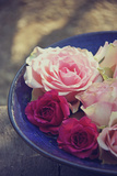 Roses in a Bowl Photographic Print by Leentje photography by Helaine Weide