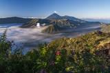 Bromo Volcano Photographic Print by  www.tonnaja.com