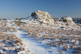 Great Tor Rocks in the Snow, Dartmoor, England Photographic Print by David Clapp