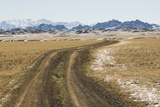 Dirt Track to Khongoryn Els, Gobi Desert Photographic Print by Alex Linghorn