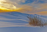 White Sands National Monument, Usa, New Mexico. Photographic Print by Alan Copson