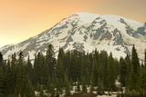 Mount Rainier and Paradise Area, Mount Rainier National Park, Washington State, USA Photographic Print by Jose Luis Stephens