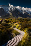 A Trail over Green Landscape of Mt Cook Photographic Print by coolbiere photograph