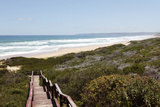 Boardwalk to Kleinkrantz Beach, Western Cape, South Africa Photographic Print by Neil Overy