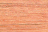 Wood Texture for Pattern and Background Poster by  joytasa